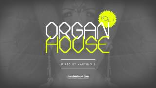 Martino B ● Organ House v001 (March 2015)