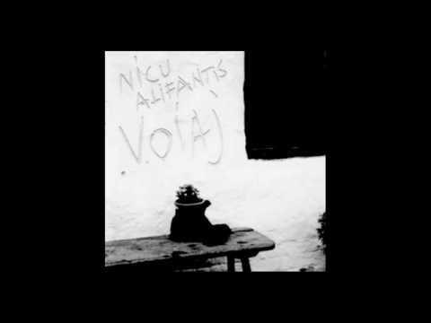 Nicu Alifantis - Voiaj