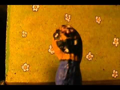 Gritos en el pasillo (soy una avellana)