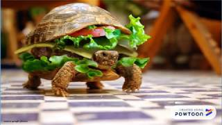 most funny animals photos in google || funny || funny videos for kids