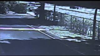 Raw: Crash Sends Car Into Fla. Pool