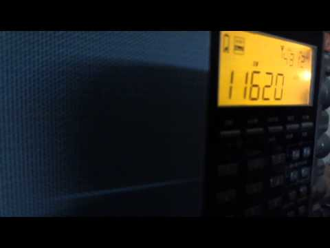 Reception Report All India Radio Sunday 20 May 2015