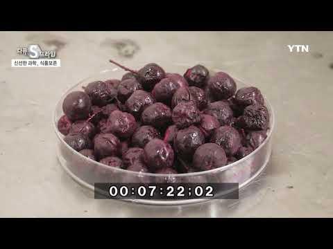 [다큐S프라임] - 맛있고, 신선한 과학 - 식품 보존 & 패키징 기술 / YTN DMB