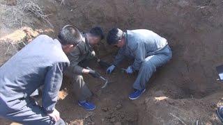 新たな「邦人埋葬地」公開