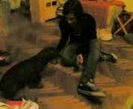 L'arianna Si Fa Un Cane..un'atra Volta video