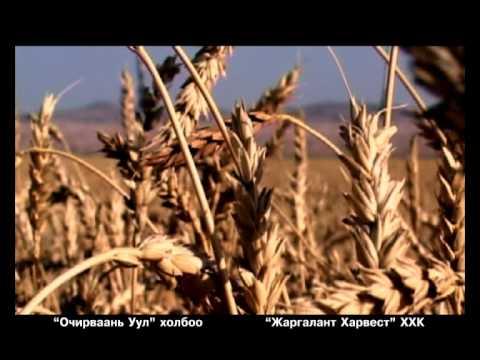 Mugj S Batsuh Dreamlife   Uyanga Duunii Altan Namar video