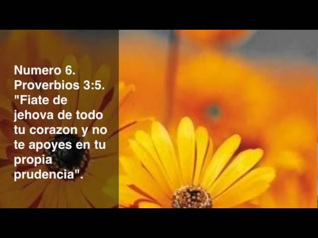 ''Los 10 Versículos Más Buscados En Internet De La Biblia''