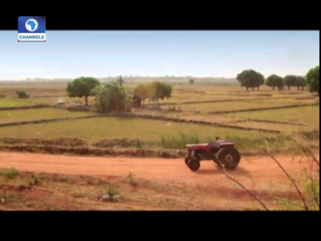 Earth File: Increasing Food Production Through Systemic Farming PT1