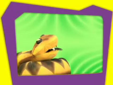 Los reptiles y anfibios