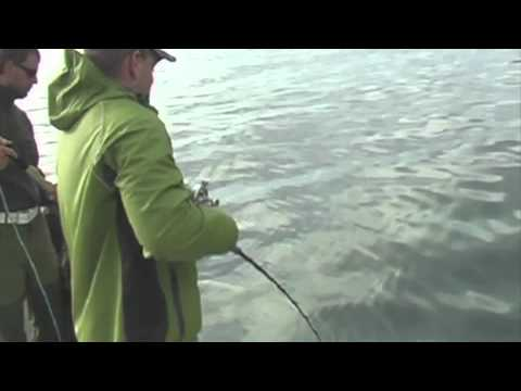 Halibut fishing in Norway 2010