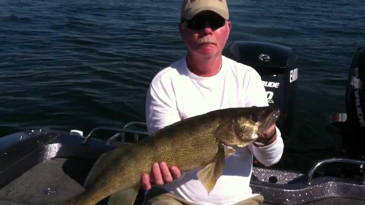 Big Walleye On Lake Oahe Youtube