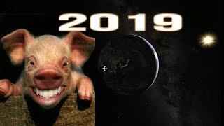 Chinese zodiac forecast for 2019  year 2019 year new china zodiac