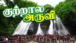 Kutralam Main Falls – Courtallam Water Falls | Main Falls | kutralam Aruvi Video