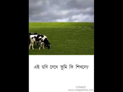 Eito Jibon Chitatei Sob Sesh video