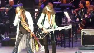 Steven Tyler - I Don't wanna miss a thing