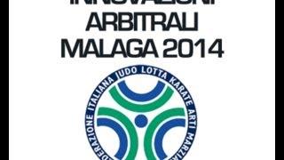 INNOVAZIONI ARBITRALI MALAGA 2014