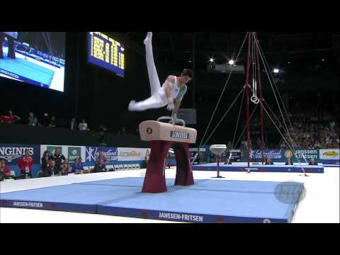 2013 Artistic Gymnastics World Championships - Men's FX, PH and SR Finals - We are Gymnastics!