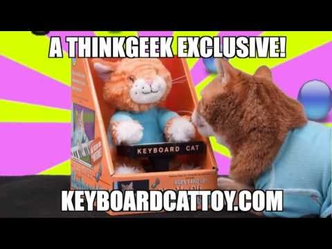 The Keyboard Cat Toy Is OUT NOW!!!