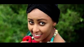 Desalegn addisu  - Shelmign (Ethiopian Music)