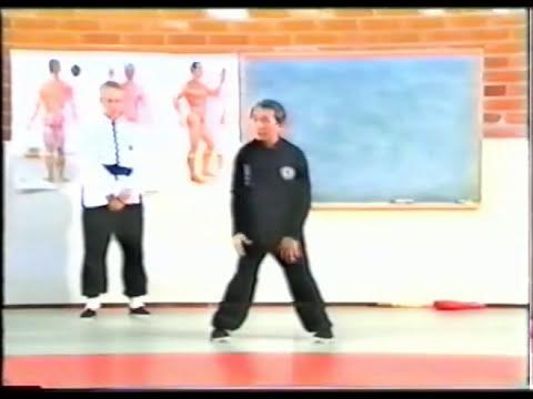 Pachitanglang Su Yu Chang chikung 12 meridianos