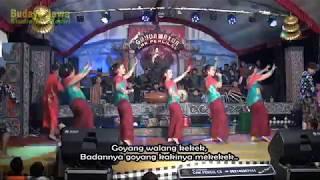 Download Lagu GOYANG WALANG KEKEK - ALL ARTIST Gratis STAFABAND