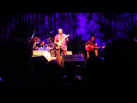 The Robert Cray Band LIVE - Smoking Gun