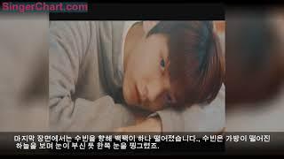 청량감 200%인 '빅히트' 신인 남돌 2번째 멤버.avi