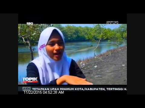 [ANTV] TOPIK WISATA HUTAN MANGROVE Hutan Mangrove Jadi Daya Tarik Wisata