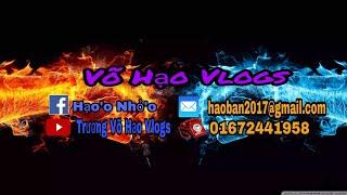 Giới Thiệu Kênh YouTube Võ Hạo Vlogs