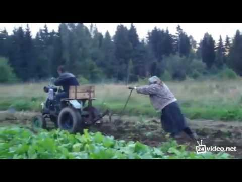 Agriculture in Russia