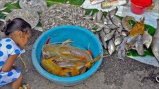 Asian food in Tha U then thai laos market 🔴  Laos food in thai street food