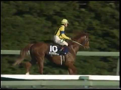 朝日杯3歳S 1996年/マイネルマックス