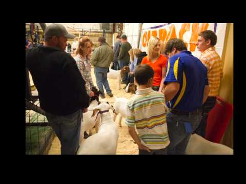 2014 Newcastle FFA Bonus Auction Slideshow