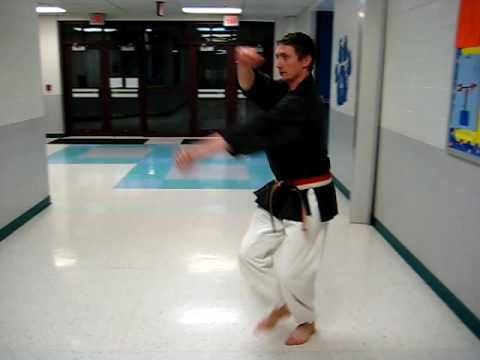 Isshin-Ryu Karate - Don Nagle Speed Drill 1
