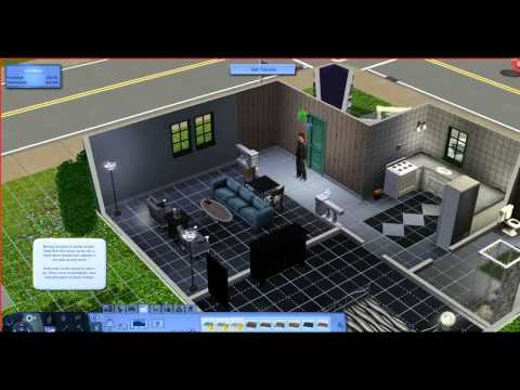 The Sims 3 Project - The Birth Of A New Life! #1