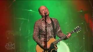 Hoodoo Gurus - Tojo (Live at Dig It Up! Sydney) | Moshcam