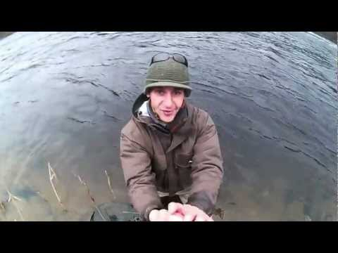 Salmon Fishing Scotland Catholes river Tay at Stanley Perthshire...