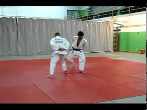 judo anaerobic alactat training Image 1