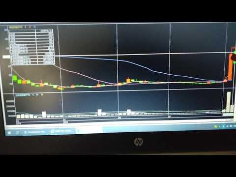 株式投資  ローソク足の大小で勢いを占う       ビートHD