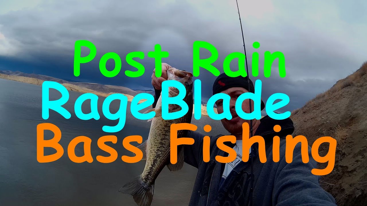 Post Rain Chatterbait Bass Fishing in Slightly Stained Water  All Action
