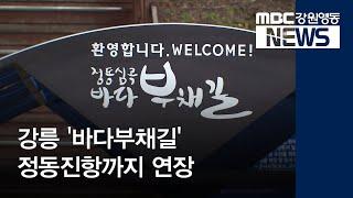 투R]강릉 '바다부채길' 정동진항까지 연장