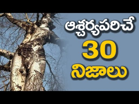 30 Interesting Facts In Telugu | 30 Top Most Amazing Facts | Surprising Facts | Unknown Facts Telugu