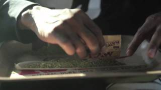 Wiz Khalifa - Medicated [Official Video] (Clean)