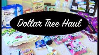 DOLLAR TREE HAUL ♥︎ October 2017