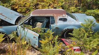 The Last Classic Car Junk Yard