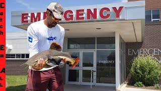 DOCTOR Saves PET FISH Brought into HOSPITAL!