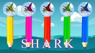 Wrong Heads SHARK Pencils Finger Family Song Colors Learn - wow KIDS COLORS TV