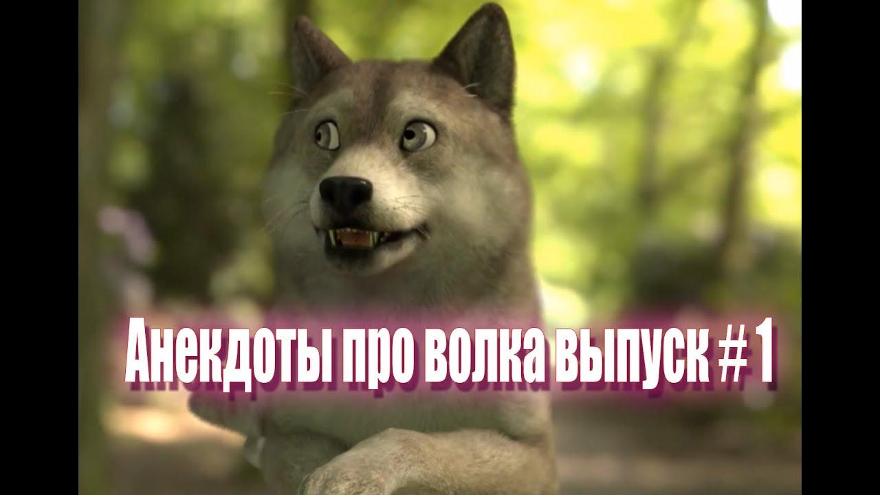 Анекдот Про Волка Видео