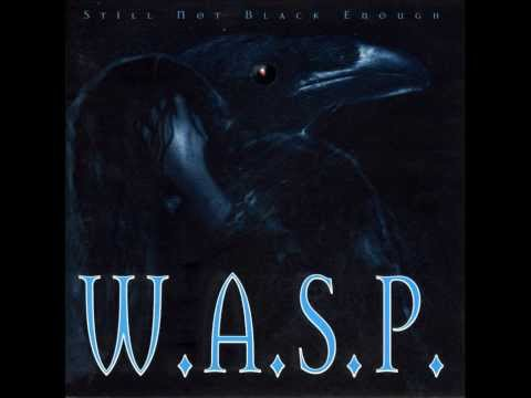 Wasp - Still Not Black Enough