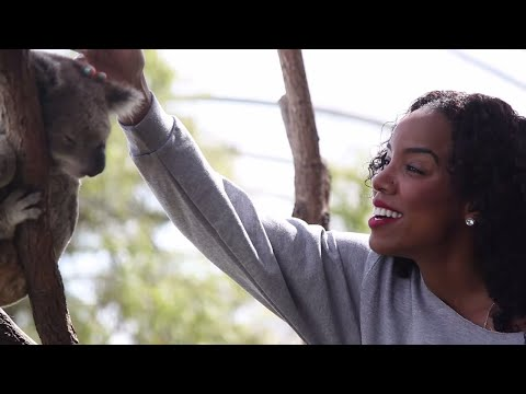 T-Pain at the Zoo with Kelly Rowland (Sydney, Australia 2012)